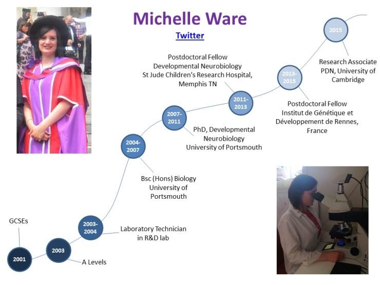 Careers_timeline_MichelleWare