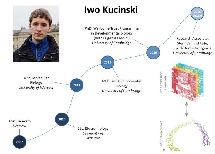 Careers_timeline_Iwo-Kucinski